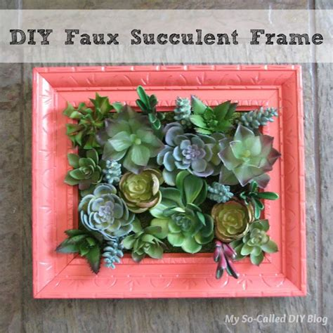 Succulent Frame My Farmscape - 17 best ideas about succulent frame on