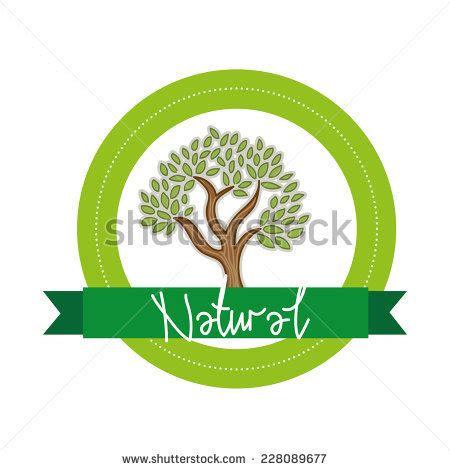 Tree Logo Template Company Logo Design Stock Vector 224109610 Shutterstock Green Tree Vector Logo Design Template Stock Vector More Images Of 2015 465664290 Istock