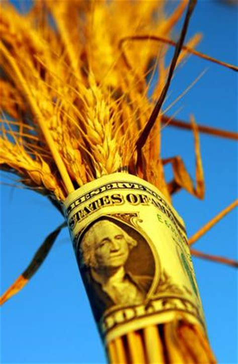 Binary Search Does Comparisons In The Worst Wheat Does The Malthusian Shuffle Benzinga