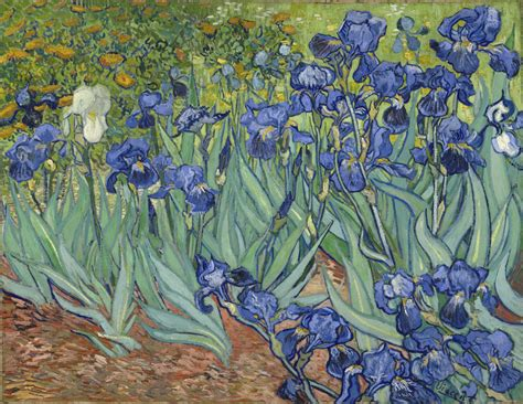 5 Paintings By Gogh by Five Ways Of Seeing Gogh S Irises The Getty Iris