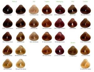 color chart for naturtint i m one of those naturalistas