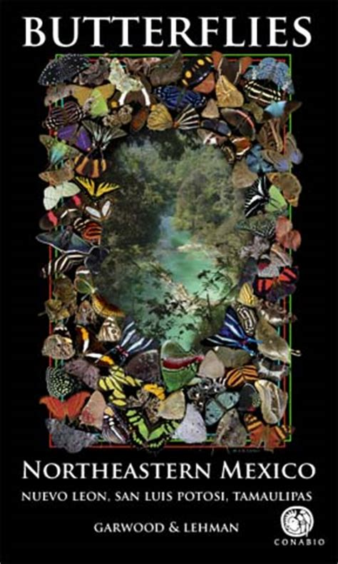 a guide to butterflies of mexico and central america books butterflying mexico and america