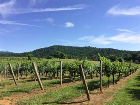 sharp rock vineyard bed and breakfast cottages updated