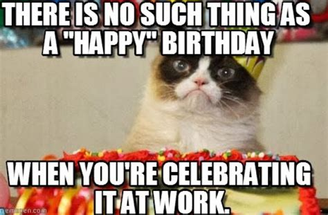 Grumpy Cat Happy Birthday Meme - the december birthday struggle bus