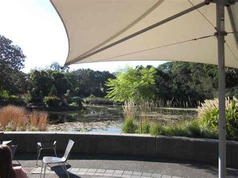 royal botanic gardens melbourne cafe the terrace royal botanic gardens melbourne