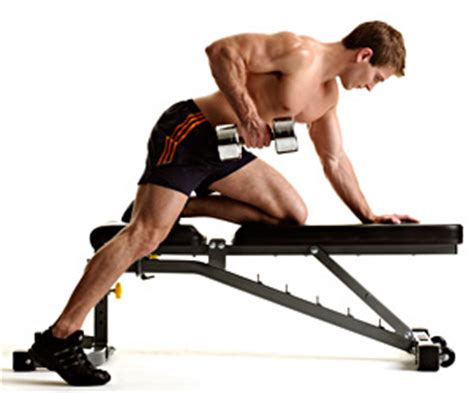 dumbbell bench rows one arm dumbbell row