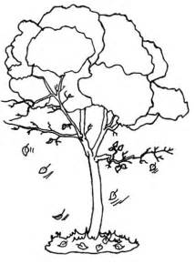 fall tree color page autumn tree coloring pages coloring