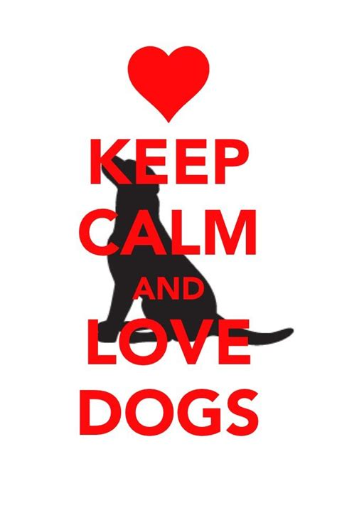 calm dogs keep calm and dogs posters keep calm