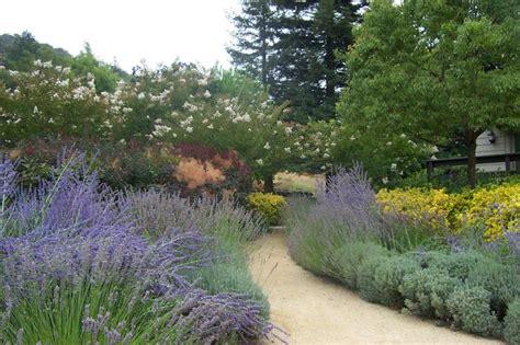 garden walkway tips for creating an inviting walkway hgtv