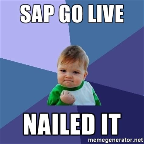Sap Meme - sap go live nailed it success kid meme generator