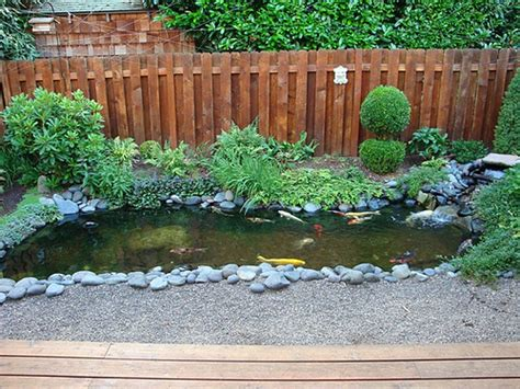backyard koi ponds backyard koi pond