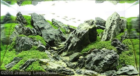 Batu Aquascape Lava Hitam Aquarium top ten nano aquascape aga 2015 aquajaya