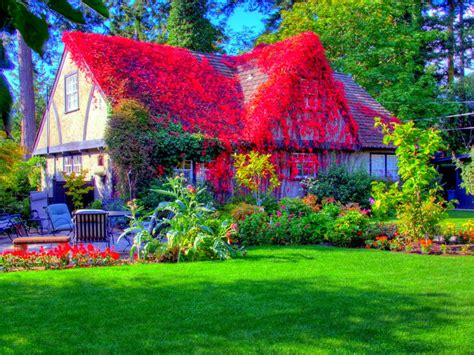 modern beautiful cottage house grass style hd