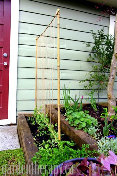 How To Make A Sweet Pea Trellis a pea trellis with