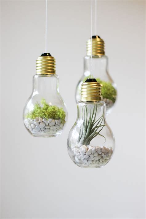 Handmade Light Bulbs - diy lightbulb terrariums home
