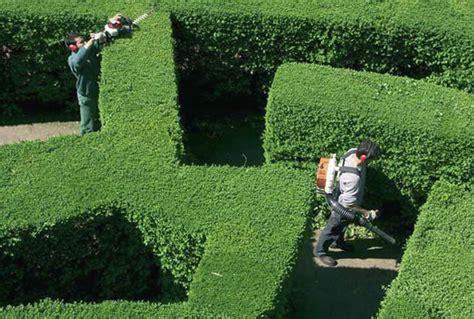 lavoro come giardiniere rischi lavoro giardiniere kasco srl