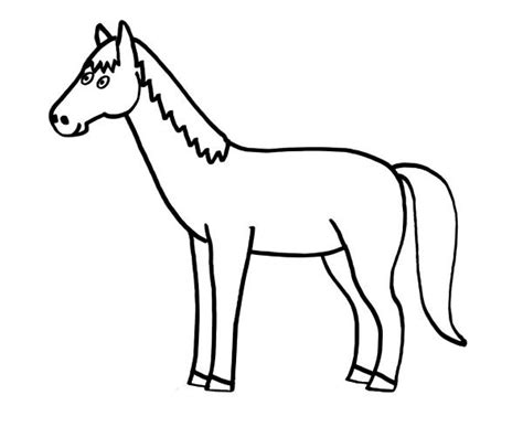 dibujos para colorear de caballos caballo dibujo www pixshark com images galleries with