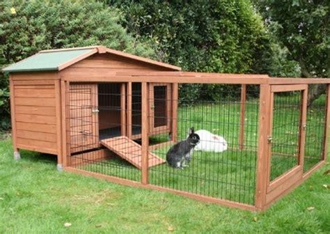 gabbia dei conigli gabbie conigli conigli