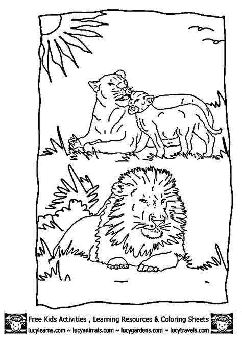 lion coloring sheets lucy lion coloring pages kids zoo