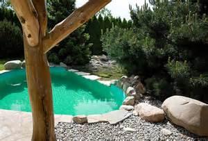 schwimmbad steinen bachlauf wasserspiele und quellstein gartengestaltung