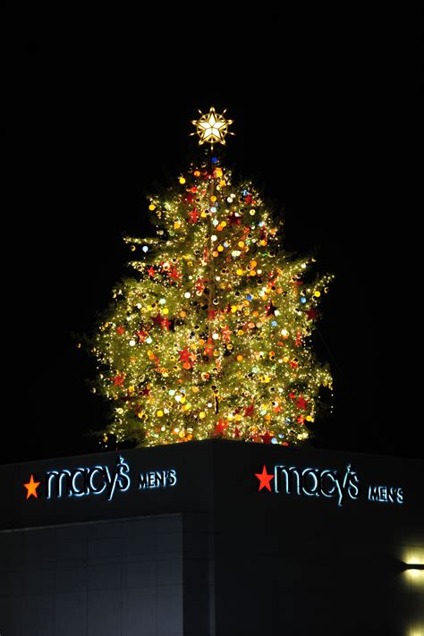 lighting of macy s great tree is thanksgiving night