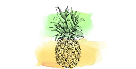 Pineapple Wallpaper | pineapple wallpapers wallpaper cave
