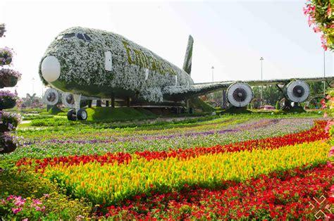 Dubai Miracle Garden A Flower Paradise Passion For Dubai Dubai Flower Garden