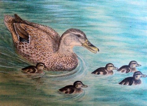 the gallery for gt duck painting