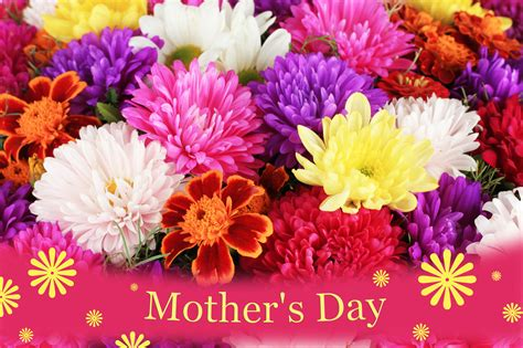 S Day Flowers by Happy Mothers Day Flowers Weneedfun