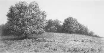 Landscape Pictures Drawing Timothy Arzt Hillstead Landscape Pencil Drawing 3 X 5 5