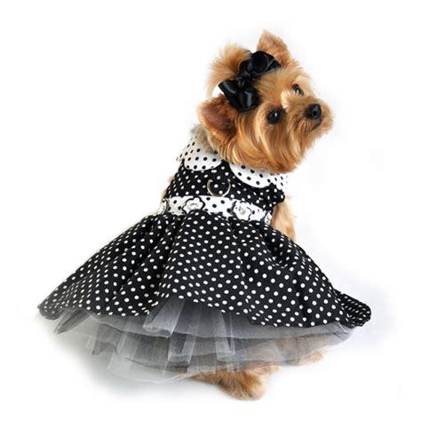 puppy dresses black and white polka dot dress pet impulse