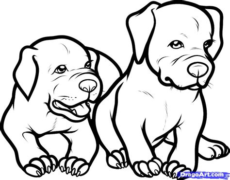 coloring pages pitbull puppies only pitbull dogs coloring pages how to draw baby
