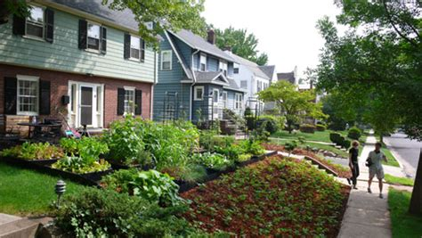 Best Plants For Front Yard Beauty And Food Gardensall Turn Lawn Into Vegetable Garden