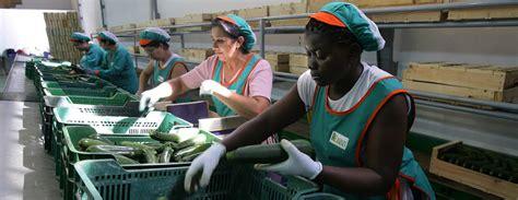 cadenas de suministro en nicaragua biodiversidad en am 233 rica latina la migraci 243 n una pieza