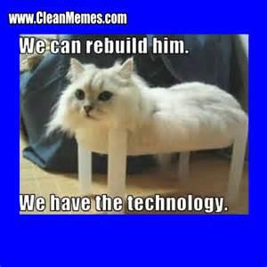 Clean Cat Memes - clean cat memes www imgkid com the image kid has it