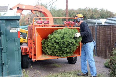 waste management christmas trees tree disposal and recycling in metro