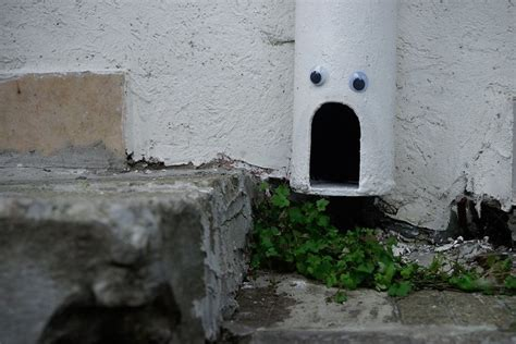bulgaria puts googly eyes  broken street