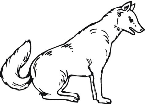 wolf coloring pages wolf coloring pages free printable pictures coloring