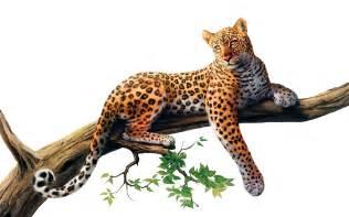 Artof Jaguar Jaguar Png Transparent Images Png All