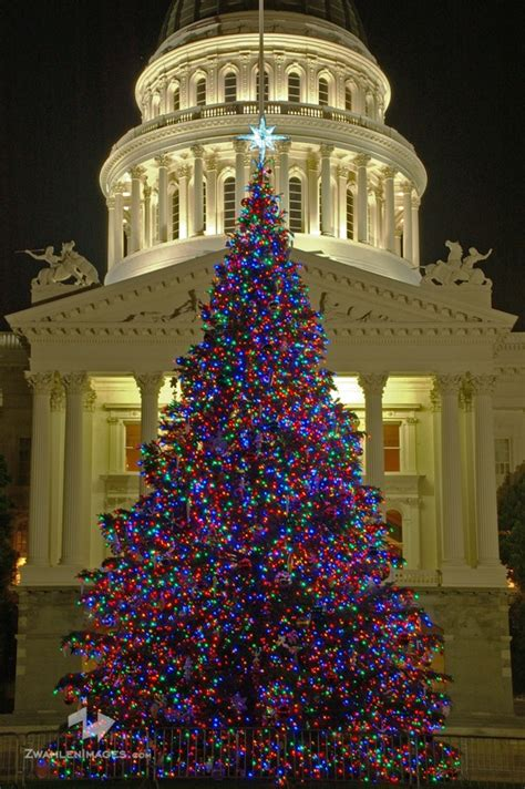 capitol mall christmas tree our nation s capital capitol