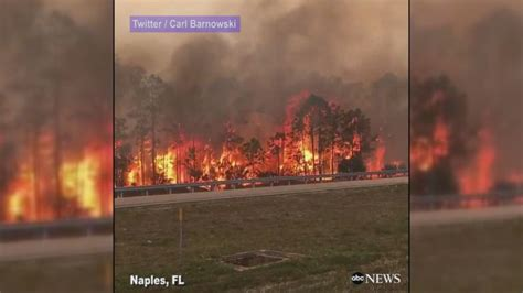 florida wildfires brush breaks out near naples florida abc news