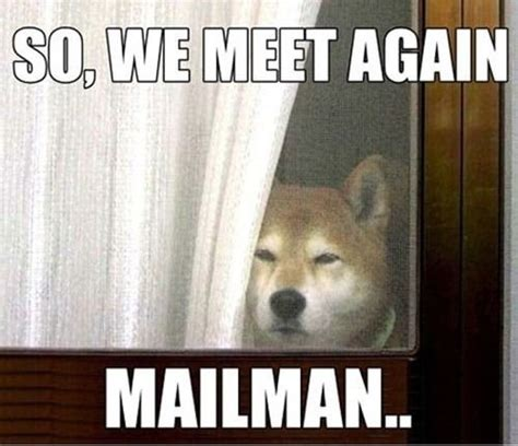 meet  mailman pictures   images