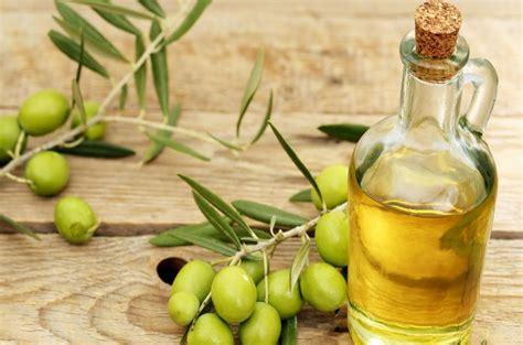 Minyak Kelapa Tunggal 15 manfaat minyak zaitun bagi kesehatan