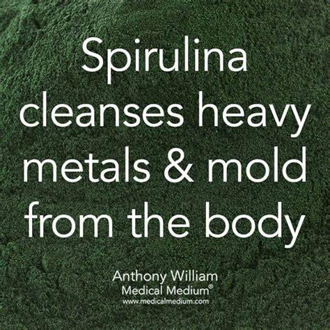Spirulina Detoxes Heavy Metals by 1000 Ideas About Alkaline Water On