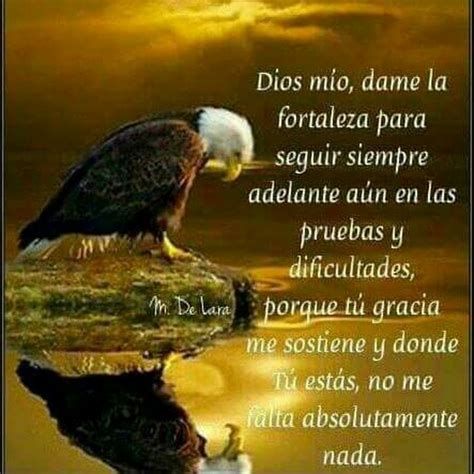 imagenes y frases cristianas frases cristianas de fortaleza related keywords frases