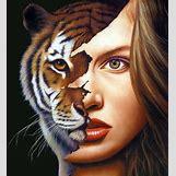 Half Lion Half Tiger Art | 579 x 635 jpeg 80kB
