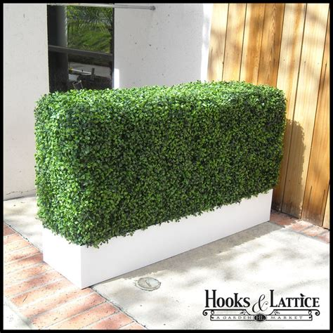 Hedge In Planter Boxes by Boxwood Indoor Artificial Hedge In Modern Planter 36in L X