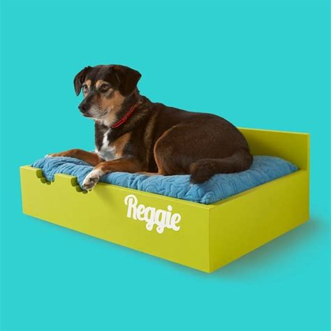 diy raised dog bed 17 best images about raised dog beds on pinterest a