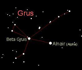 libro constellations grus