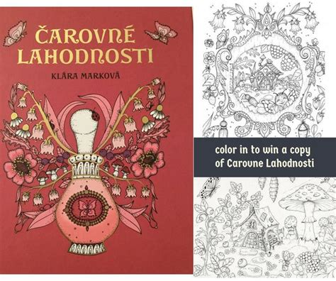 libro magical delights colouring book 35 best images about colouring books i want on fantasy world coloring and illustrators